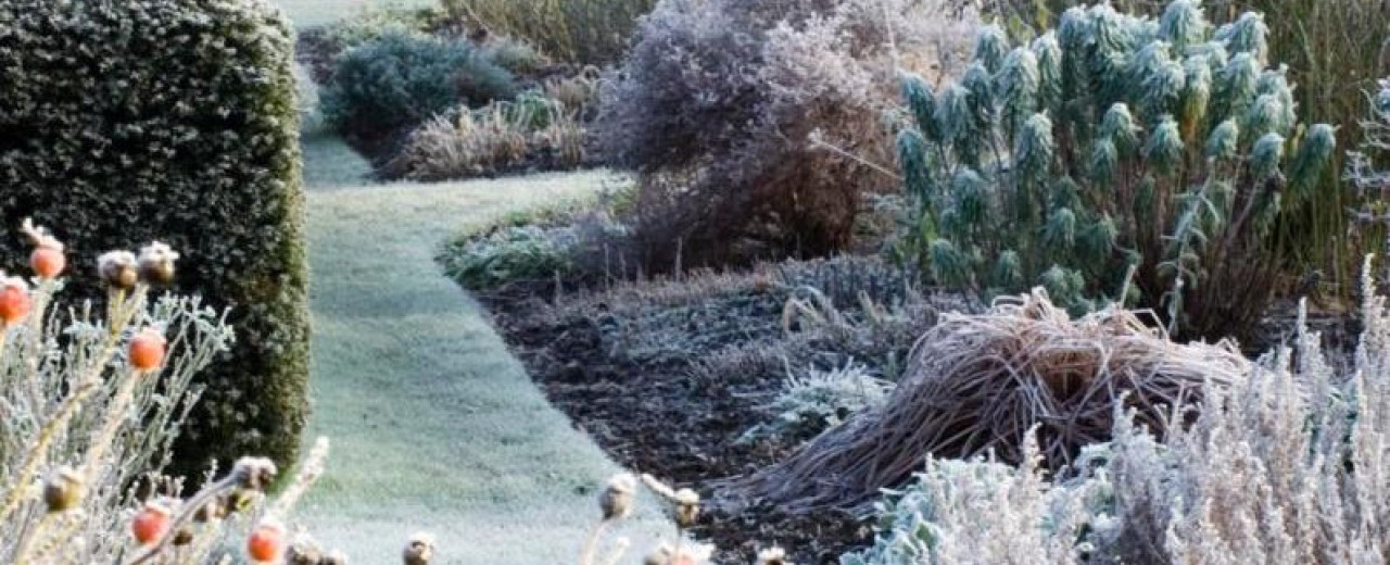 Strulch Garden Mulch was mentioned in this interesting article about winter gardening by Bunny Guinness in the Telegraph gardening section