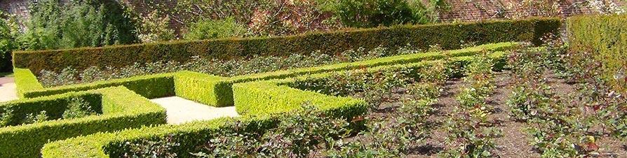 Strulch mulch in a formal garden